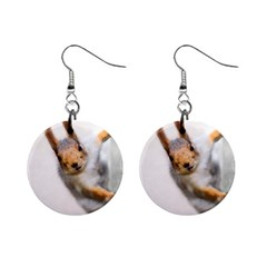 Curious Squirrel Mini Button Earrings by FunnyCow