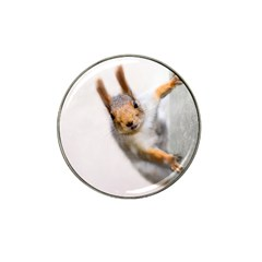 Curious Squirrel Hat Clip Ball Marker (10 Pack) by FunnyCow
