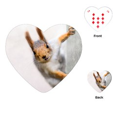 Curious Squirrel Playing Cards (heart)  by FunnyCow