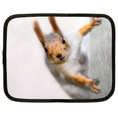 Curious Squirrel Netbook Case (xl)  by FunnyCow