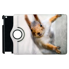Curious Squirrel Apple Ipad 3/4 Flip 360 Case by FunnyCow