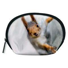 Curious Squirrel Accessory Pouches (medium)  by FunnyCow