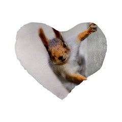 Curious Squirrel Standard 16  Premium Flano Heart Shape Cushions by FunnyCow