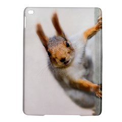 Curious Squirrel Ipad Air 2 Hardshell Cases by FunnyCow