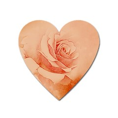Wonderful Rose In Soft Colors Heart Magnet by FantasyWorld7