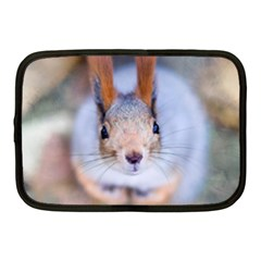 Squirrel Looks At You Netbook Case (medium)  by FunnyCow