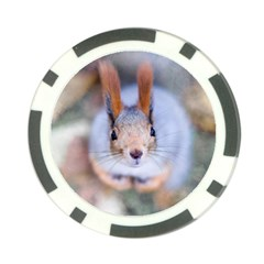 Squirrel Looks At You Poker Chip Card Guard (10 Pack) by FunnyCow