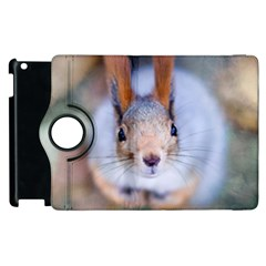 Squirrel Looks At You Apple Ipad 3/4 Flip 360 Case by FunnyCow