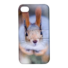 Squirrel Looks At You Apple Iphone 4/4s Hardshell Case With Stand by FunnyCow