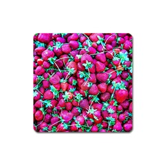 Pile Of Red Strawberries Square Magnet by FunnyCow