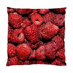 Red Raspberries Standard Cushion Case (two Sides) by FunnyCow