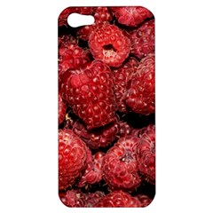 Red Raspberries Apple Iphone 5 Hardshell Case by FunnyCow