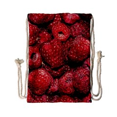 Red Raspberries Drawstring Bag (small) by FunnyCow