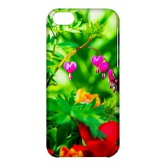 Bleeding Heart Flowers In Spring Apple Iphone 5c Hardshell Case by FunnyCow