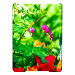 Bleeding Heart Flowers In Spring Ipad Air Hardshell Cases by FunnyCow