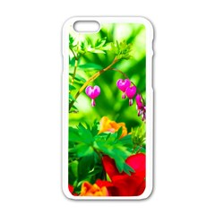 Bleeding Heart Flowers In Spring Apple Iphone 6/6s White Enamel Case by FunnyCow