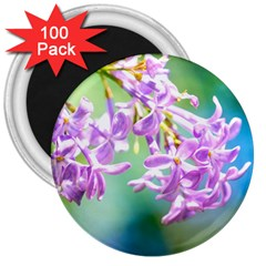 Beautiful Pink Lilac Flowers 3  Magnets (100 Pack) by FunnyCow