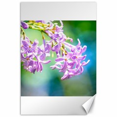 Beautiful Pink Lilac Flowers Canvas 24  X 36  by FunnyCow