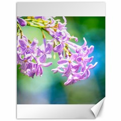Beautiful Pink Lilac Flowers Canvas 36  X 48   by FunnyCow