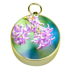 Beautiful Pink Lilac Flowers Gold Compasses by FunnyCow