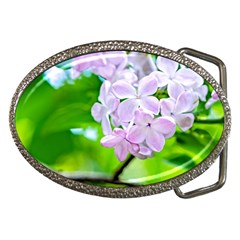 Elegant Pink Lilacs In Spring Belt Buckles by FunnyCow