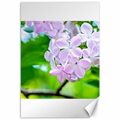 Elegant Pink Lilacs In Spring Canvas 12  X 18   by FunnyCow