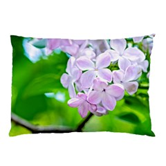 Elegant Pink Lilacs In Spring Pillow Case by FunnyCow