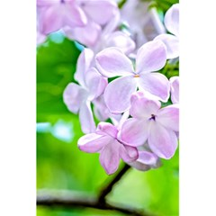 Elegant Pink Lilacs In Spring 5 5  X 8 5  Notebooks by FunnyCow