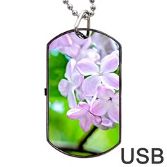 Elegant Pink Lilacs In Spring Dog Tag Usb Flash (two Sides)