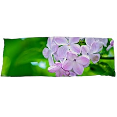 Elegant Pink Lilacs In Spring Body Pillow Case (dakimakura) by FunnyCow