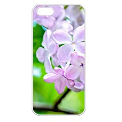 Elegant Pink Lilacs In Spring Apple Iphone 5 Seamless Case (white) by FunnyCow