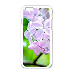Elegant Pink Lilacs In Spring Apple Iphone 6/6s White Enamel Case by FunnyCow