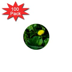Yellow Dandelion Flowers In Spring 1  Mini Buttons (100 Pack)  by FunnyCow