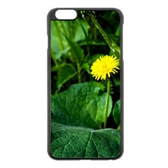 Yellow Dandelion Flowers In Spring Apple Iphone 6 Plus/6s Plus Black Enamel Case by FunnyCow