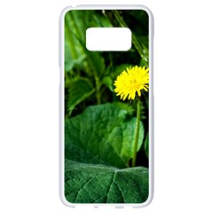 Yellow Dandelion Flowers In Spring Samsung Galaxy S8 White Seamless Case by FunnyCow