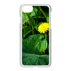 Yellow Dandelion Flowers In Spring Apple Iphone 8 Seamless Case (white) by FunnyCow
