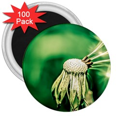 Dandelion Flower Green Chief 3  Magnets (100 Pack) by FunnyCow