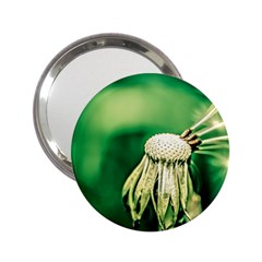 Dandelion Flower Green Chief 2 25  Handbag Mirrors by FunnyCow