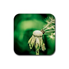 Dandelion Flower Green Chief Rubber Square Coaster (4 Pack)  by FunnyCow