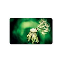 Dandelion Flower Green Chief Magnet (name Card) by FunnyCow