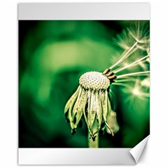 Dandelion Flower Green Chief Canvas 11  X 14   by FunnyCow