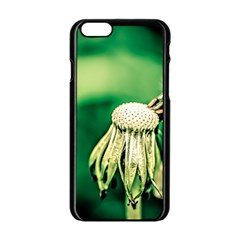 Dandelion Flower Green Chief Apple Iphone 6/6s Black Enamel Case by FunnyCow