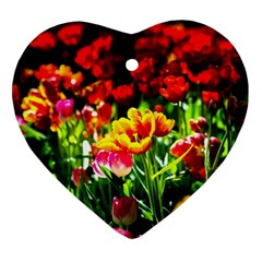 Colorful Tulips On A Sunny Day Ornament (heart) by FunnyCow
