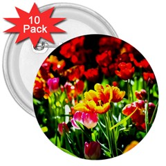 Colorful Tulips On A Sunny Day 3  Buttons (10 Pack)  by FunnyCow