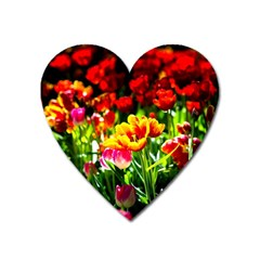Colorful Tulips On A Sunny Day Heart Magnet by FunnyCow