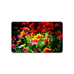 Colorful Tulips On A Sunny Day Magnet (name Card) by FunnyCow