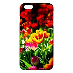 Colorful Tulips On A Sunny Day Iphone 6 Plus/6s Plus Tpu Case by FunnyCow
