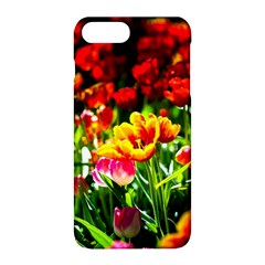 Colorful Tulips On A Sunny Day Apple Iphone 8 Plus Hardshell Case by FunnyCow