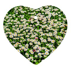 Green Field Of White Daisy Flowers Ornament (heart) by FunnyCow