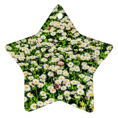 Green Field Of White Daisy Flowers Ornament (star) by FunnyCow